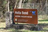 Holla Bend National Widlife Refuge - November 2014