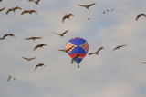 Wheeler National Wildlife Refuge - 12/26/2014