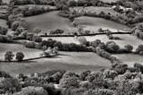 Field tapestry