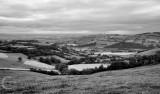 The Exe Valley near Silverton in Mid Devon