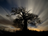 Raddon Top in moonlight