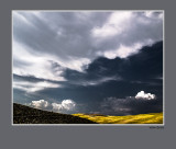 landscape Orcia