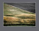 landabstract.jpg