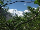The Morteratsch Glacier