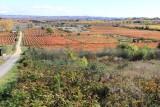 Laguardia (Rioja Alavesa)