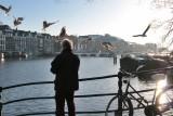 Feeding the Pigeons in the Binnen Amstel (Amstel River)