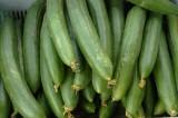 Japanese cucumbers