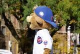 Clark the mascot