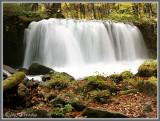 奧入瀨溪流 Oirase Stream