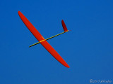 Sailplane 模型滑翔機