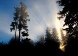 des rayons de lumière