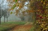 le Bastberg en automne - 2