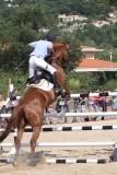 1er Salon du cheval à Montauroux