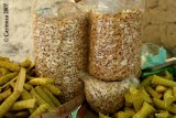 Toasted Cashew Nut from Antipolo