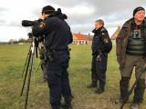 Police confirms yellow-legged gull. :)