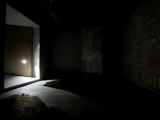 ZOE LEONARD'S CAMERA OBSCURA (Lens and Darkened Room) GALLERY.