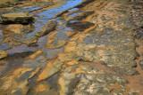 Rock Reef Powlett River