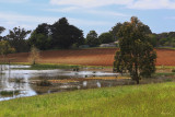 Small lake on a private property