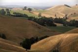 Roaming Hills - Korumburra
