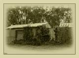 Old tin sheds