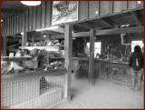 Workshop in Wood