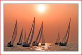 Sail Racing 2013