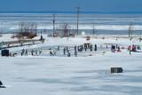 Harbour Hockey Classic 2014 040.jpg