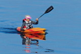 Kayaking on the harbour P1130853