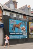 183:365upstart police horse