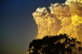 Bushfire Clouds and Others