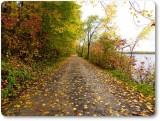 Autumn along the Ottawa River