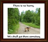 There is no hurry...