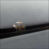 rust_windshield_140519.jpg