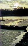 Requiem Fora Dying Lake