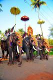 Rich Elephants' Parade