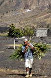Volcano's Boy Difficult Life