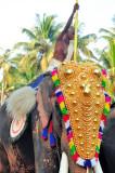 Priest On Elephant