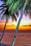 The Sun Sets On The Equator