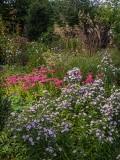 Garden introduction