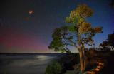 Grand Canyon Star/Moonlight