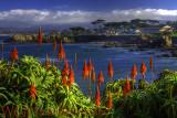 Pacific Grove Monterey