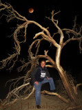 Death Valley Ghost Tree
