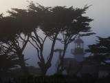Foggggy Point Pinos Lighthouse