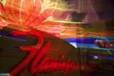 Flamingo Neon Las Vegas