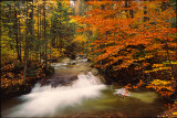 Franconia Notch Autumn