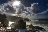 Shoreline Acres Oregon