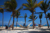 Excaret Palm Cove
