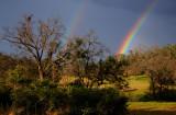 Hwy 49 Backroad Rainbows