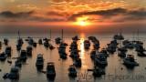 Avalon Sunrise