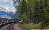 2011 - Rocky Mountains - Alberta - Canada
